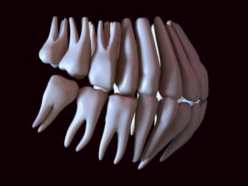 Estudio biomecánico de postes preformados en primeros premolares superiores